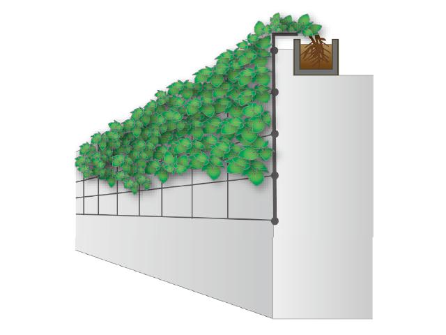 ④下垂型(補助資材有)